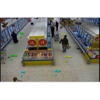Zählkameras / Videoanalyse